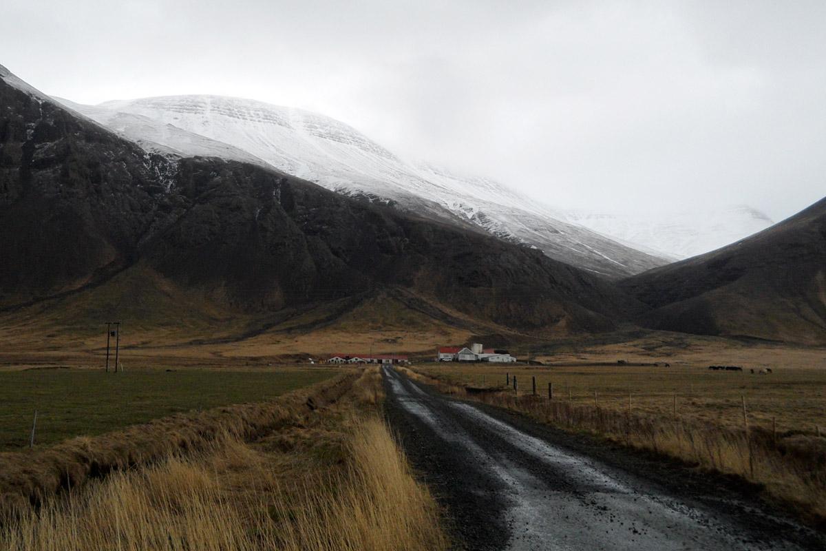 alten isländer kaufen